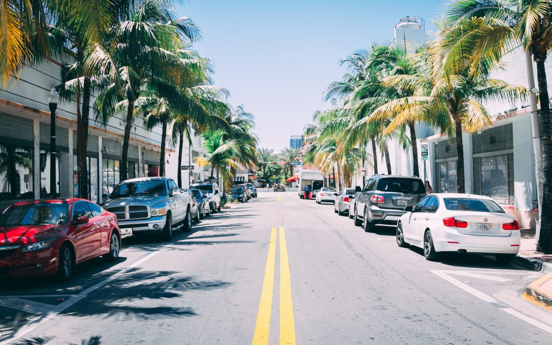The Most Profitable Business in Florida – Top 20 Ideas