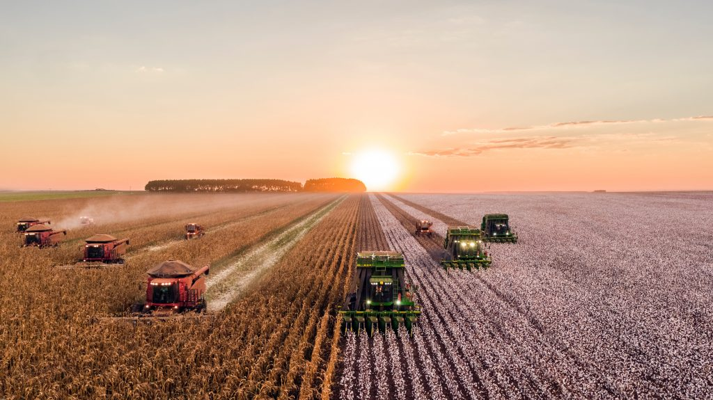 Is Farming Profitable In The 21st Century Ultimate Guide Businessnes