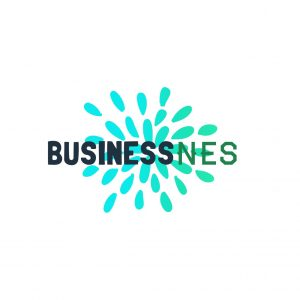 BusinessNES.com Business & New Earning Solutions